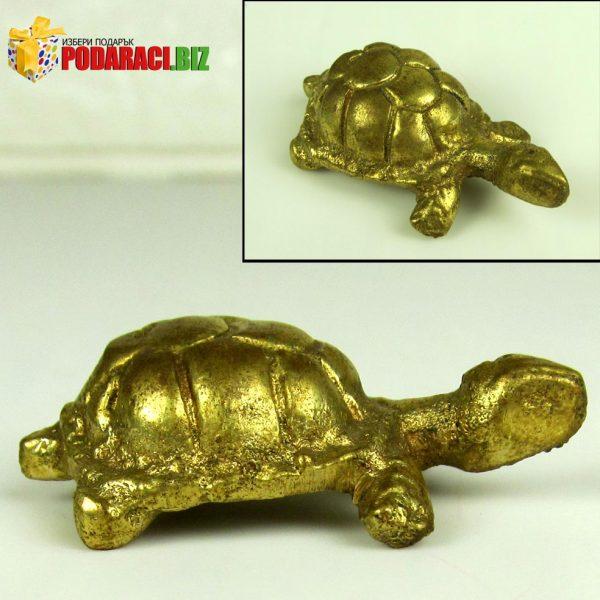 -костенурка.jpg